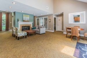 Apartments in Stone Mountain Georgia for rent