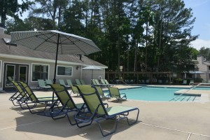 One Bedroom Apartment in Stone Mountain, GA for rent