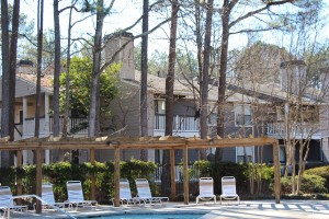 One Bedroom Apartment For Rent in Stone Mountain, GA
