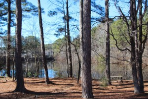 3 Bedroom Apartments For Rent in Stone Mountain, GA